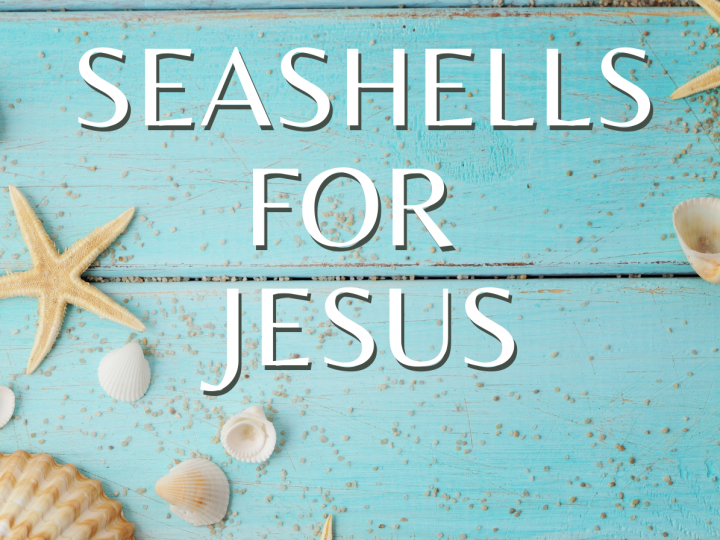 Seashells For Jesus