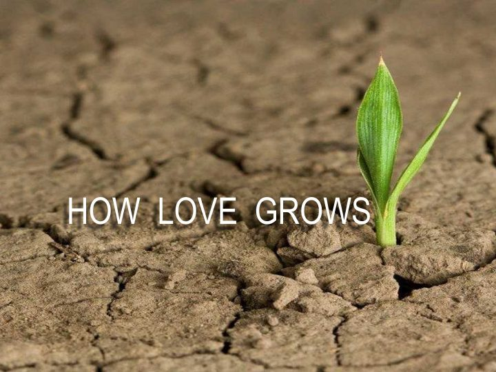Psalm 63:1-8 – How Love Grows
